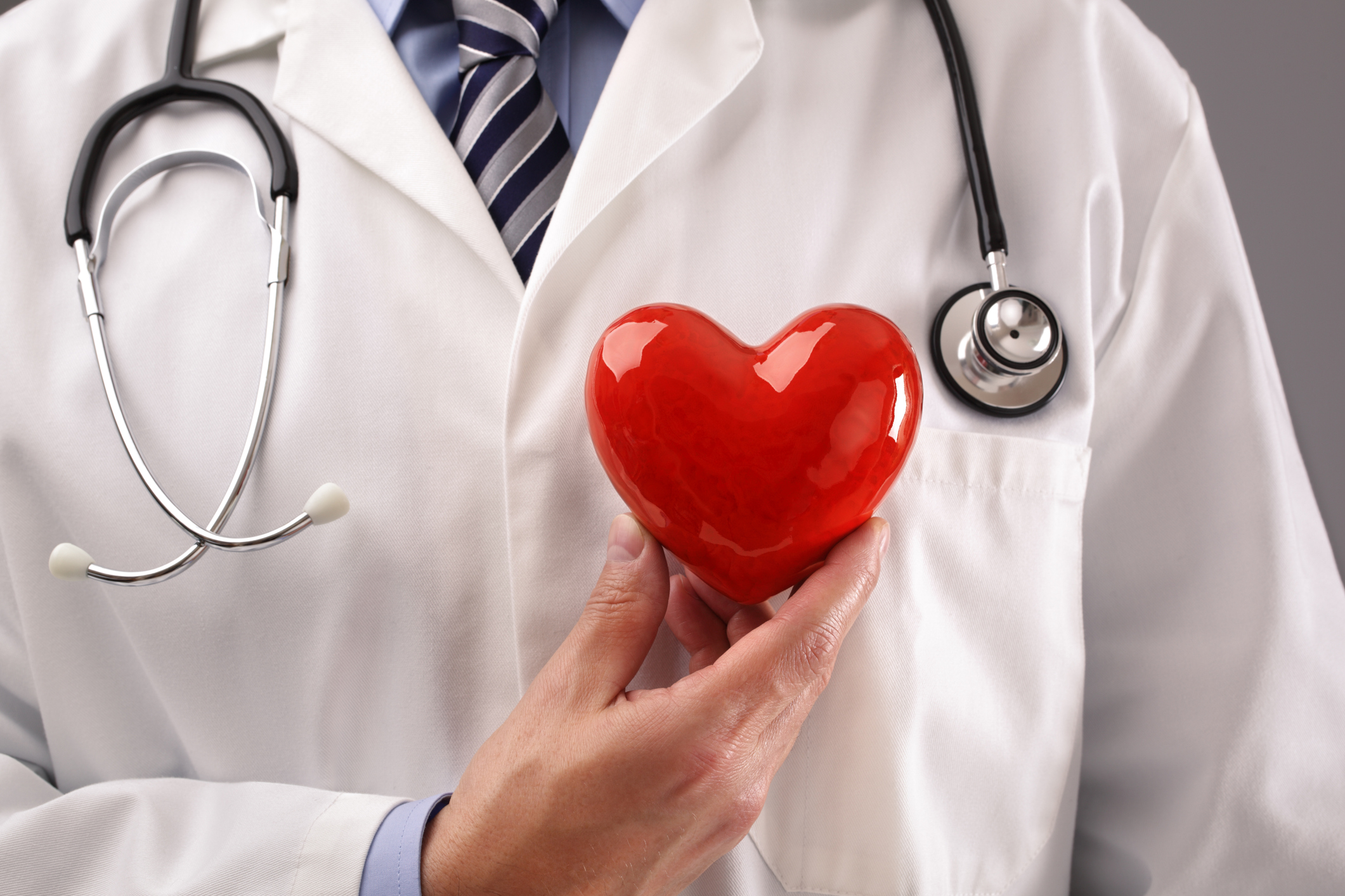 Doctor or cardiologist holding heart against chest concept for healthcare and diagnosis medical cardiac pulse test